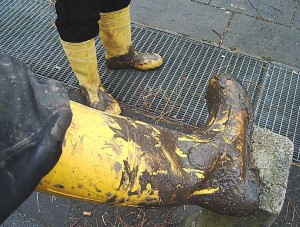 yellow-boots