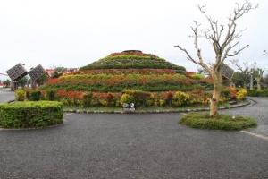 rose mound
